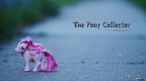 The Pony Collector